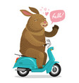 easter bunny riding on scooter cartoon vector image vector image