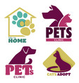 take me home animal shelter and pets clinic vector image