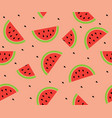 watermelon background vector image vector image
