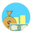 capital money icon vector image