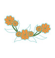 beautiful ornamental flowers vector image vector image