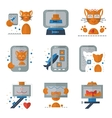 Cat selfie flat colored icons vector image