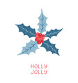 holly leaves and berries on white background vector image