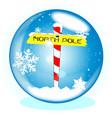 north pole winter globe vector image