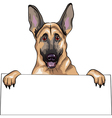 portrait of german shepherd vector image vector image