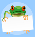 red eyed tree frogs vector image vector image