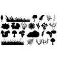 set ornamental plant silhouette vector image