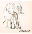 doodle elephant vector image