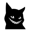 black cat with a frightening wide smile vector image vector image