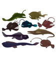 flat set of different predatory fishes sea vector image vector image