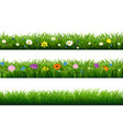 grass border with flower vector image vector image