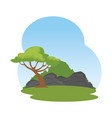 landscape savannahh scene icon vector image