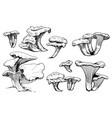 mushroom hand drawn vector image