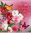 roses and butterflies vector image vector image