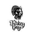turkey day hand lettering of vector image vector image