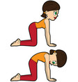 yoga asana set cat-cow vector image vector image