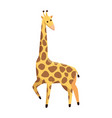 african giraffe wildlife animal vector image vector image