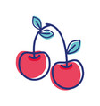 cherry fruit icon stock vector image vector image