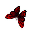 flat icon of bright red-black butterfly vector image vector image