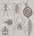 Insects Seven bugs vector image