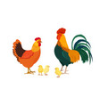 cock hen and little chickens vector image vector image