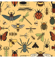 Insects seamless pattern 24 pieces in set vector image vector image