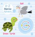 letter g tracing green turtle gull marine alphabet