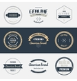 Premium quality labels set Brands design elements vector image vector image