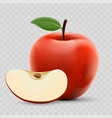 red ripe apple and slice isolated