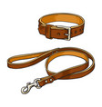 simple brown leather pet cat dog buckle collar vector image vector image