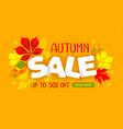 Advertising banner about seasonal autumn sale
