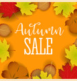 autumn calligraphy seasonal letteringweb banner vector image vector image