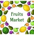 Fruits market decoration element with fruit icons vector image
