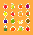 fruitsMinimal v3 vector image vector image