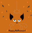 halloween holiday card with cat looking at vector image