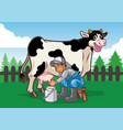 happy cow while the farmer milking vector image vector image