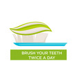 mouth hygiene toothbrush and toothpaste brush vector image vector image