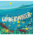 Underwater world with coral reef vector image