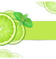background of lime vector image vector image