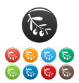 branch of olives icons set color vector image