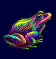 frog abstract neon portrait a frog vector image vector image