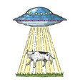 ufo kidnaps the cow color sketch engraving vector image vector image