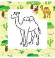 camel coloring page vector image