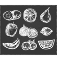 collection hand-drawn fruits vector image vector image