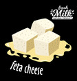 diced feta cheese icon isolated on black vector image