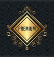 premium quality golden frame vector image vector image