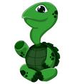 Cartoon turtle presenting vector image