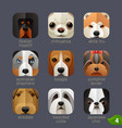 animal faces for app icons-dogs set 3 vector image