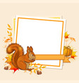 autumn background with squirrel vector image vector image