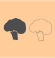 broccoli dark grey set icon vector image